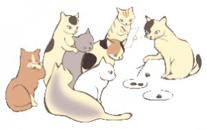 friendly catery, group of cats