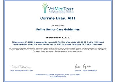 Feline Senior Care